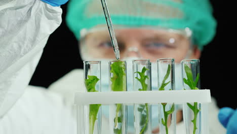 Scientist-conducts-research-with-plants-in-lab-2