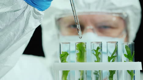 Scientist-in-protective-jumpsuit-and-glasses-works-in-the-laboratory-with-samples-of-plants
