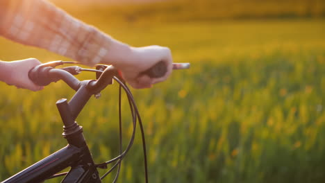 The-Woman-s-Hands-On-The-Handlebars-Of-The-Bike-Rides-Along-The-Green-Picturesque-Meadow