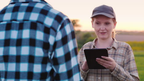 Man-And-Female-Farmers-Work-In-A-Field-At-Sunset-Use-A-Tablet-2