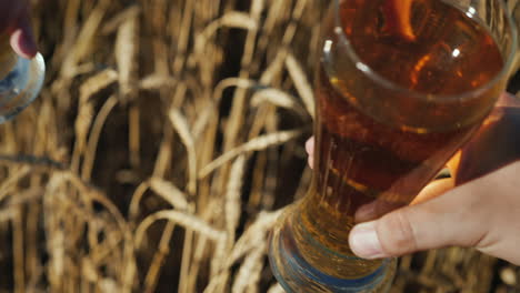 Hands-with-glasses-of-beer-clink-glasses-in-a-wheat-field-2