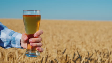 Men-s-hand-holds-a-glass-of-light-beer-in-a-wheat-field-on-a-summer-day