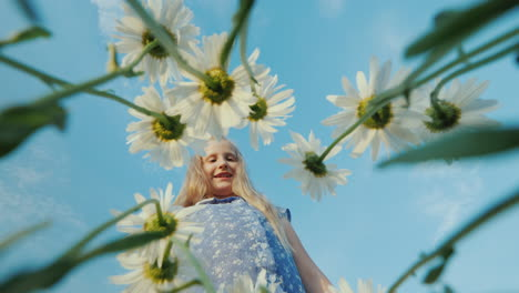 A-child-plucks-daisies-in-a-field
