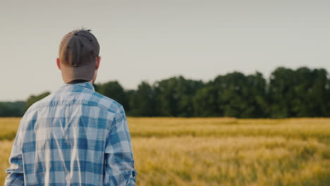 Back-View:-A-Young-Farmer-With-A-Tablet-In-His-Hand-Walks-Along-A-Wheat-Field