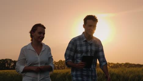 Two-Farmers-Walk-Along-A-Wheat-Field-At-Sunset-Talking