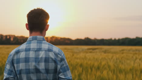 Farmer-Admires-A-Field-Of-Wheat-At-Sunset