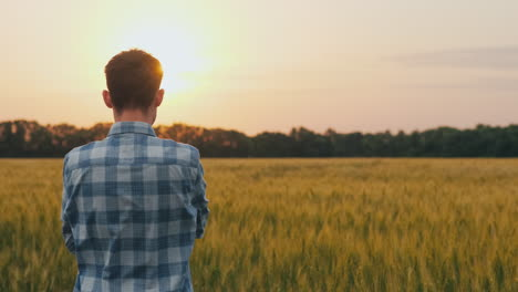 A-Confident-Farmer-Admires-A-Field-Of-Wheat-At-Sunset