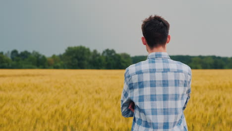 Man-Admires-A-Field-Of-Wheat-At-Sunset-1