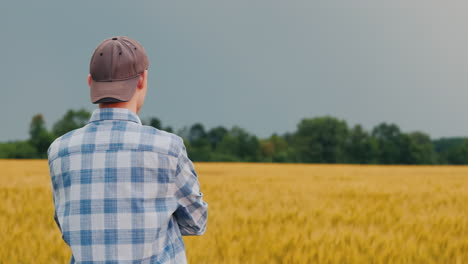 Man-Admires-A-Field-Of-Wheat-At-Sunset-2