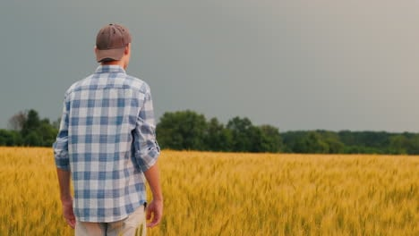 Farmer-Admires-A-Field-Of-Wheat-At-Sunset-1