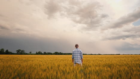 Farmer-In-A-Field-Of-Wheat-Against-The-Background-Of-A-Stormy-Sky