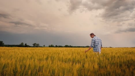 The-Figure-Of-A-Farmer-In-A-Field-Against-The-Background-Of-A-Stormy-Sky