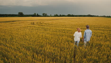Two-Farmers-Stand-In-A-Field-Of-Wheat-Against-A-Stormy-Sky-Where-Lightning-Is-Visible