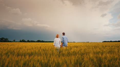 Two-Farmers-Stand-In-A-Field-Of-Wheat-Against-A-Stormy-Sky-1