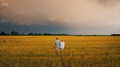 Two-Farmers-Stand-In-A-Field-Of-Wheat-Against-A-Stormy-Sky-3