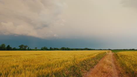 Road-To-The-Field-Of-Wheat-Against-The-Background-Of-A-Dramatic-Storm-Sky-2