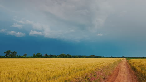 Scenic-Road-In-A-Field-Of-Wheat-Against-The-Background-Of-Storm-Clouds-And-Lightning
