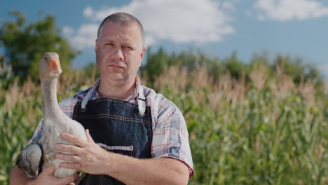 A-farmer-holds-a-large-goose-2