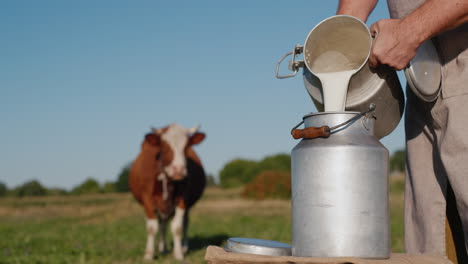 Farmer-pours-milk-into-a-can-with-a-cow-in-the-background