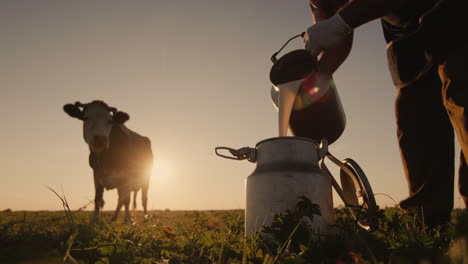 Farmer-pours-milk-into-can-at-sunset-1