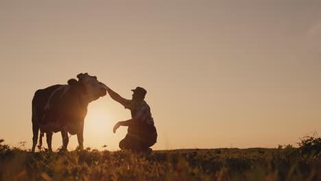 The-silhouette-of-a-farmer-near-a-cow