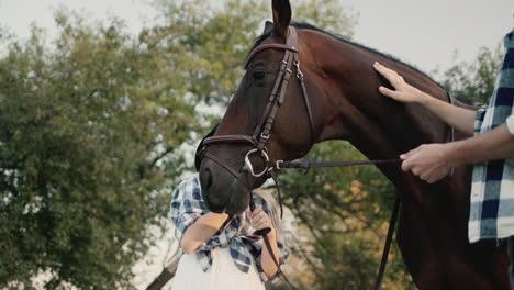 Girl-Strokes-a-Horse-2