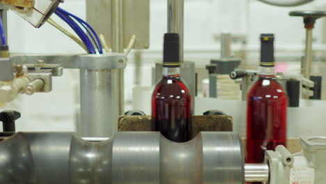 Bottles-Of-Red-Wine-Move-On-A-Conveyor-Belt-5
