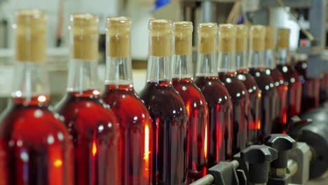 Bottles-Of-Red-Wine-Move-On-A-Conveyor-Belt-14