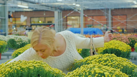 Young-Caucasian-Woman-Chooses-Flowers-For-Landscaping-In-The-Nursery
