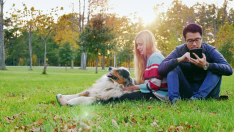 Young-Multi-Ethnic-Couple-Relaxing-In-The-Park-With-Their-Dog