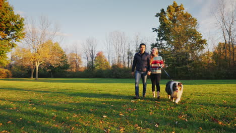 Young-Carefree-Couple-Walking-With-A-Dog-In-The-Park-2