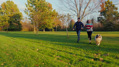 Young-Carefree-Couple-Walking-With-A-Dog-In-The-Park-3