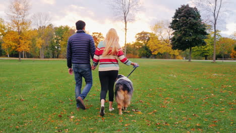 Young-Couple-Holding-Hands-Walking-With-A-Dog-In-The-Park-3