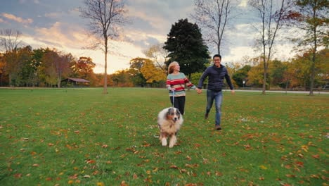 Young-Couple-Holding-Hands-Walking-With-A-Dog-In-The-Park-5