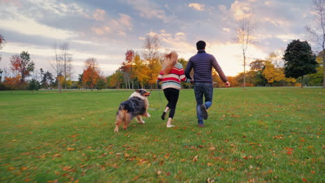 Young-Couple-Holding-Hands-Walking-With-A-Dog-In-The-Park-6