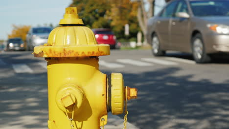Fire-Hydrant-In-A-Small-American-Town