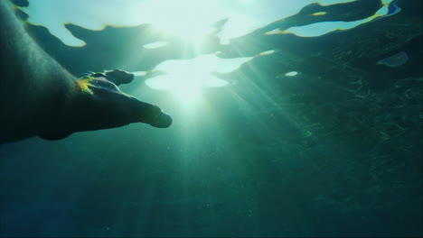 The-Man-s-Hand-Reaches-Out-To-The-Sun-Under-The-Water