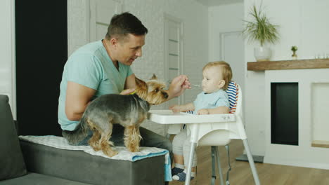 A-Young-Caucasian-Father-Is-Feeding-His-Son-From-A-Spoon-At-Home