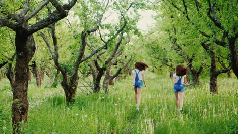Two-Carefree-Girls-Are-Running-Around-In-The-Field-Of-Dandelions-1