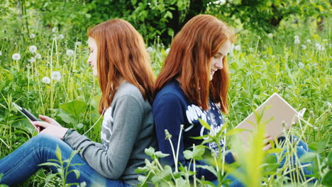 Two-Twin-Sisters-Rest-In-The-Park