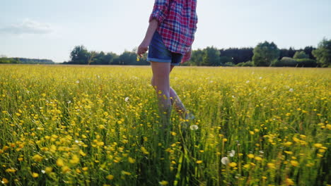 A-Woman-Is-Walking-Along-A-Beautiful-Meadow-With-Flowers-At-Sunset-Only-The-Legs-Are-Visible-In-The-Frame