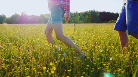Couple-Is-Walking-Along-A-Beautiful-Meadow-With-Flowers-At-Sunset-Only-The-Legs-Are-Visible-In-The-Frame