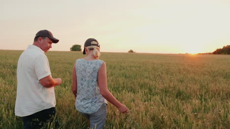 Two-Farmers-Are-Walking-Along-The-Wheat-Field-Towards-The-Setting-Sun