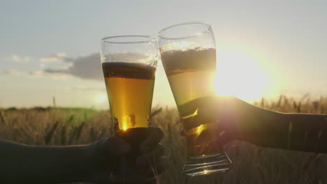 Hands-With-Glasses-Of-Beer-Clink-Glasses-On-The-Background-Of-A-Field-Of-Wheat