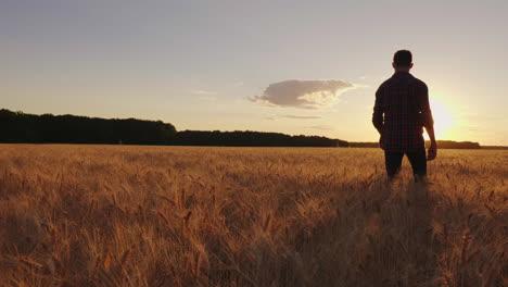 A-Teenage-Boy-Walks-The-Wheat-Field-At-Sunset